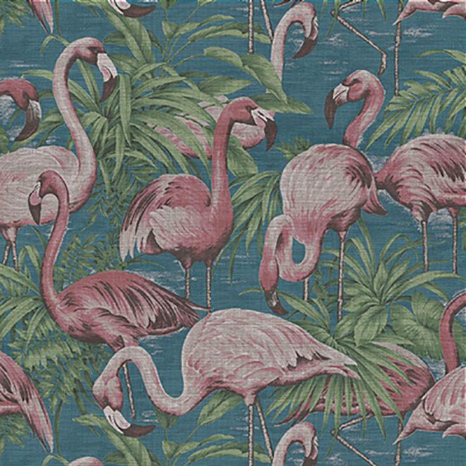 image curiosa flamingo