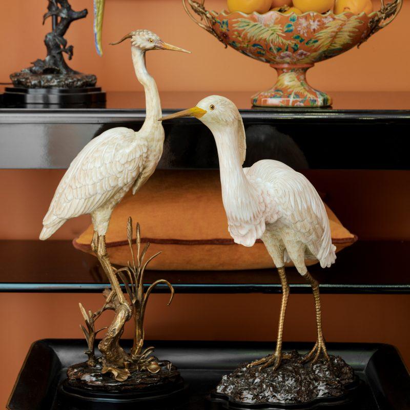 image white crane