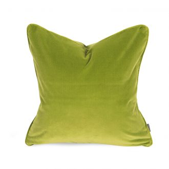 papillon lime cushion image