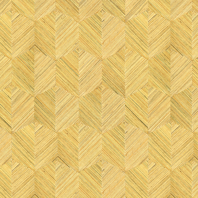 wallcovering image oculaire insignia
