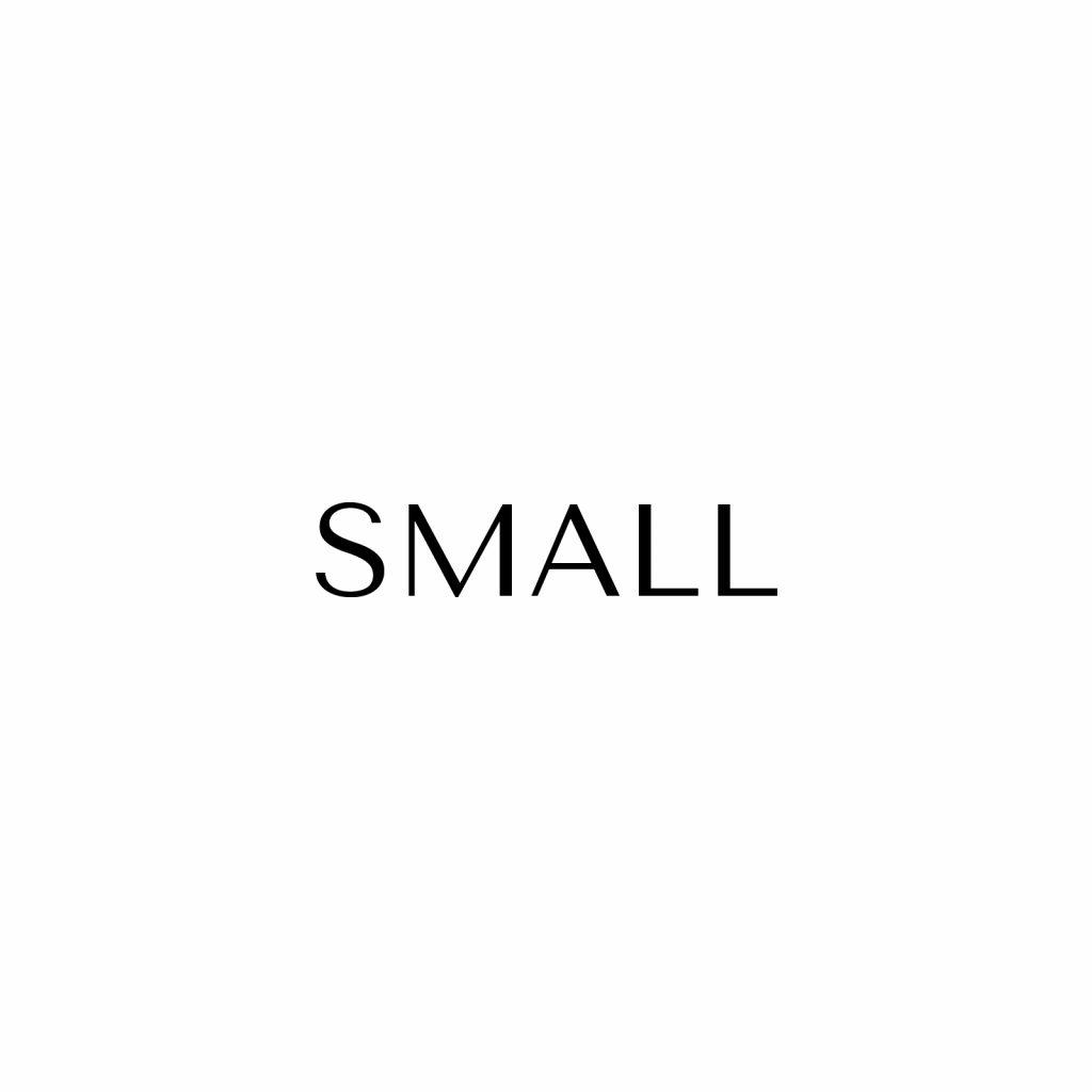 1.0 Small